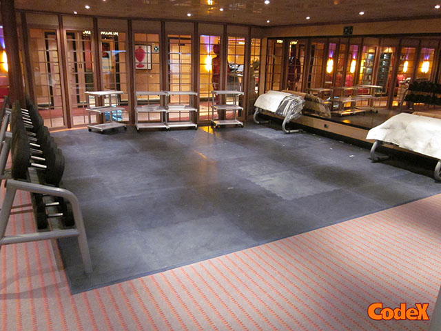 Mats And Flooring For Gyms Protective And Non Slip Codex